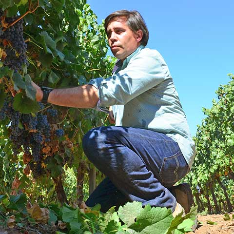 Marcelo Garcia, Chief Winemaker